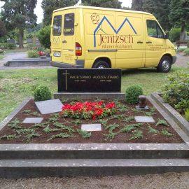 Fokus Grabpflege